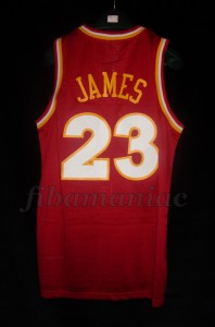 2009/2010 Fanatic Special Edition Cleveland Cavaliers Lebron James Jersey - Front